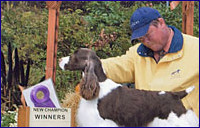 Aloha - Best of Winners A Major 2008